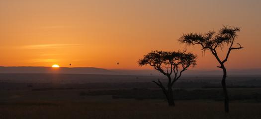 Tramonto con alberi di acacia, Kenya