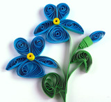 Flowers Violet made of paper in the style of quilling. - 244314226