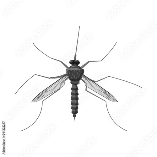Vector illustration of insect and fly icon. Set of insect and element vector icon for stock. - 244322297