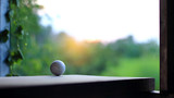 Golf ball on wood with sunset.