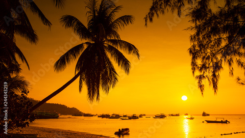 Panoromic Sunset with palm and boats on tropical beach