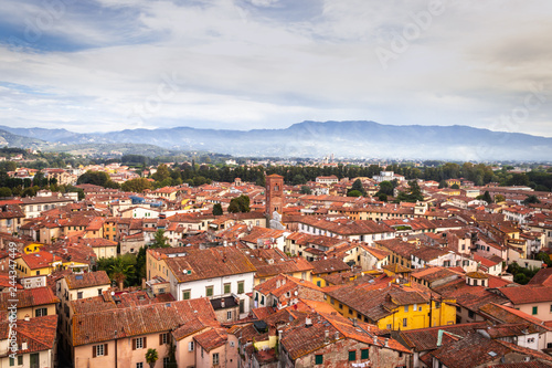 View of Lucca the walled city from above, Lucca, Tuscany, Italy, Europe