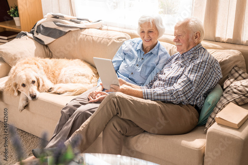 Leinwandbild Motiv Full length portrait of modern senior couple using laptop while sitting with dog on couch at home