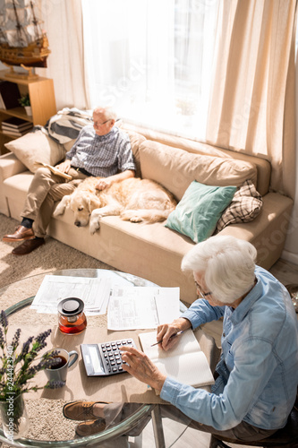 High angle portrait of elderly  man with dog sitting on couch in sunlight with senior woman filling tax forms in foreground, copy space - 244423240