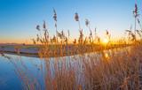 Frozen canal in the light of sunrise below a blue sky in winter - 244423842