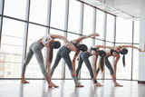 View from behind. Group of sportive girls in a spacious gym with big windows have training - 244474239