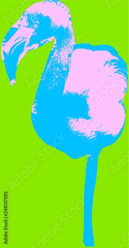 Leinwandbild Motiv Flamingo picture over green background
