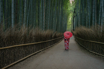 Geisha with umbrella in Arashiyama bamboo forest