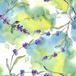 Purple lavender. Floral botanical flower. Watercolor background illustration set. Seamless background pattern.