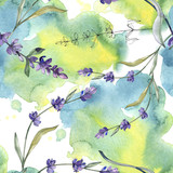 Purple lavender. Floral botanical flower. Watercolor background illustration set. Seamless background pattern. - 244510402
