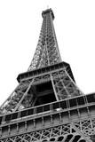 Fototapeta Fototapety z wieżą Eiffla - Parigi France Eiffel Tower On white © ChiccoDodiFC