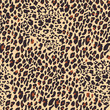 Leopard seamless pattern. Tiger skin background. Animal print. Vector illustration