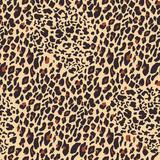 Leopard seamless pattern. Tiger skin background. Animal print. Vector illustration - 244684817