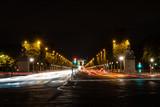Fototapeta Paryż - Les Champs-Élysées © skatzenberger