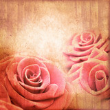 Pink roses on vintage textured square background - 244697238