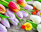 Fototapeta Tulipany - Tulpen © PhotoSG