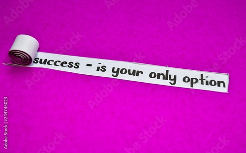 success - is your only option text, Inspiration, Motivation and business concept on purple torn paper - 244745023