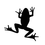 Vector silhouette of frog on white background.