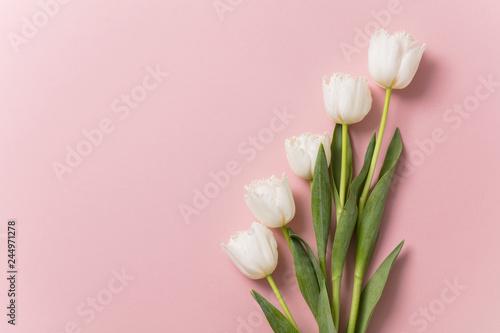 Leinwandbild Motiv White tulip flowers on a pastel pink background