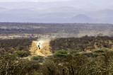 Rallye in Afrika