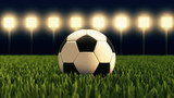 Fototapeta Sport - Soccer ball - illuminated football stadium © Petr Ciz
