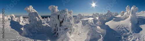 Brocken Harz Winter Skulpturen Panorama - 245123650