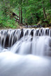 beautiful deep forest waterfall - 245147436
