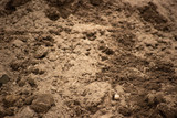 Clots of ground in the excavated surface - 245157011