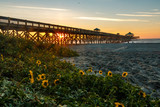 sunrise pier on beach with sunflowers in foreground