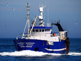 Fishing vessel underway at speed to discharge fish at market.