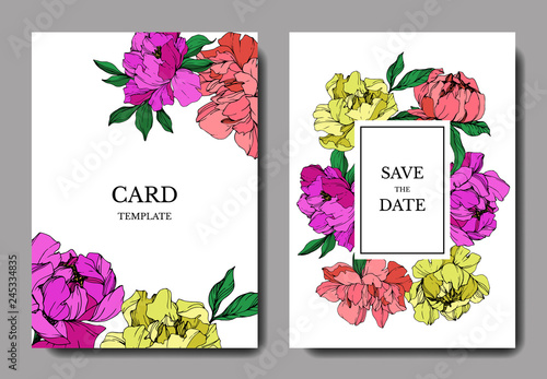 Vector Pink and yellow peony botanical flower. Engraved ink art. Wedding background card floral decorative border. - 245334835