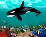 Ilustracja podwodnego świata z orką i rybami.