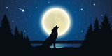 wolf howls to the full moon in a starry night vector illustration EPS10