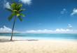 Leinwanddruck Bild - palm and beach