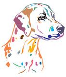 Colorful decorative portrait of Dog Dalmatian vector illustration