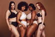 Proud group of women in lingerie posing together