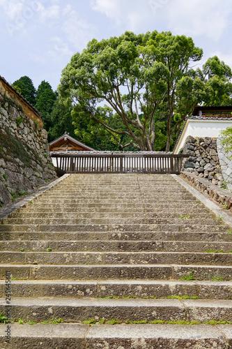 階段 © Sora
