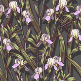 Hand Drawn Irises flowers vector seamless pattern flowered background of botany texture. Trendy Graphic Design for banner, poster, card, cover, invitation, placard, brochure or header