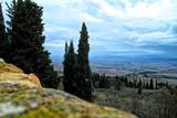 very nice view of tuscany meadow