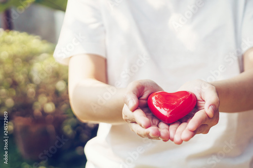 Close up female hands giving red heart on hands