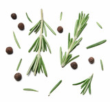 Sprigs and leaves of rosemary and allspice on white isolated background - 245900265