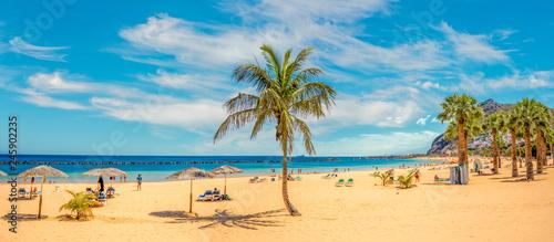 Sandy and beautiful Teresitas beach in Tenerife - 245902235