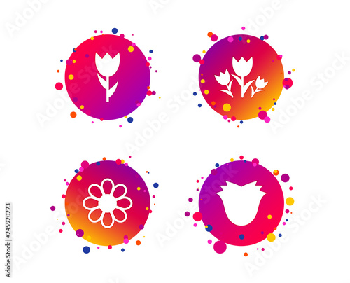 Flowers icons. Bouquet of roses symbol. Flower with petals and leaves. Gradient circle buttons with icons. Random dots design. Vector - 245920223