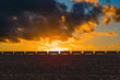 Freight train passing on on the horizon of field  in the American countryside. Sunset light and the stormy sky background.