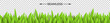 Green paper grass on a checkered background. Horizontal seamless design. Vector illustration.