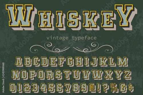 Font Script Typeface vintage script font Vector typeface for