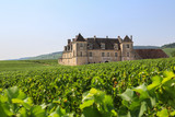 Weinbaugebiet Burgund: Weinberge und das berühmte Schloss Clos de Vougeot