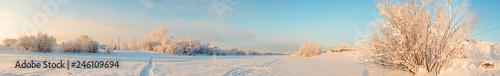 Arkhangelsk region. Winter in the vicinity of the village Levkovka. - 246109694