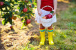 Leinwandbild Motiv Little girl picking apples in fruit garden