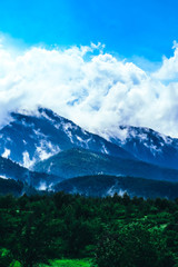 Photo depicting beautiful a foggy mystic mountains. Fog clouds at the pine tree mystical woods, morning. Europe, mysterious alps landscape. © alicefoxartbox